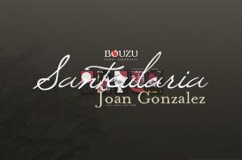 Creation of website for Japanese Restaurant in Barcelona