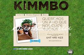Creating informational website about the Rhodesian Ridgeback dog breed