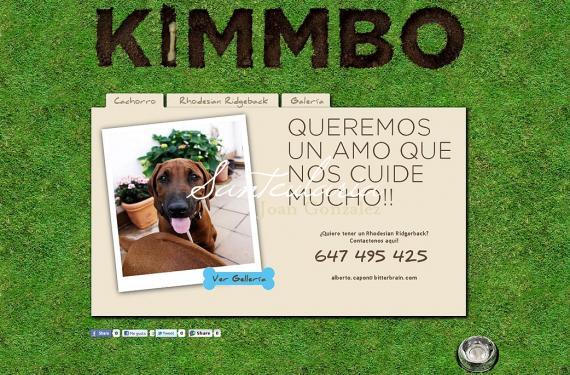 Creació de lloc web informatiu sobre la raça de gos Rhodesian Ridgeback